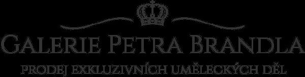 galeriepetrbrandl.cz